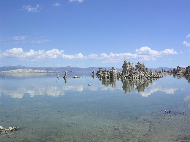 Tuff - im Mono Lake