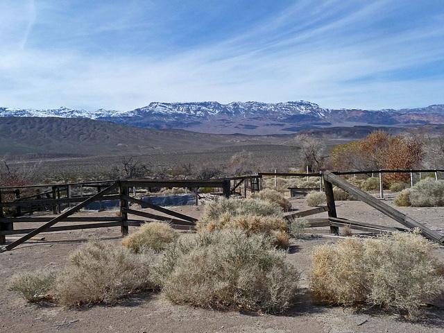 Lower Vine Ranch (3432)