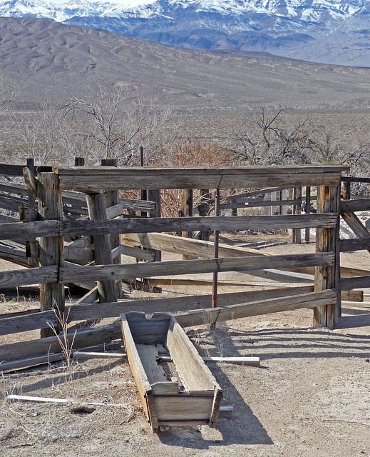 Lower Vine Ranch (3433)
