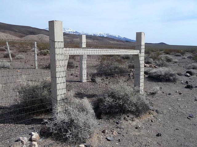 Lower Vine Ranch (3460)