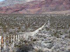 Lower Vine Ranch Fence (3424)
