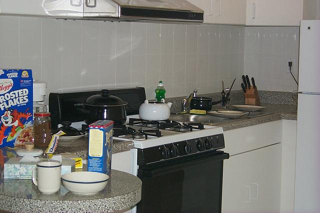 kitchen big