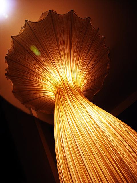 licht / light / lumière