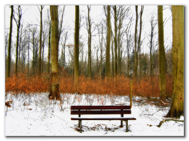 Little bench