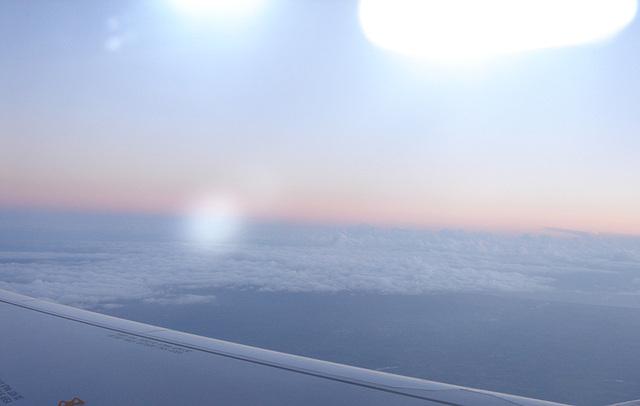 Pink-Flight