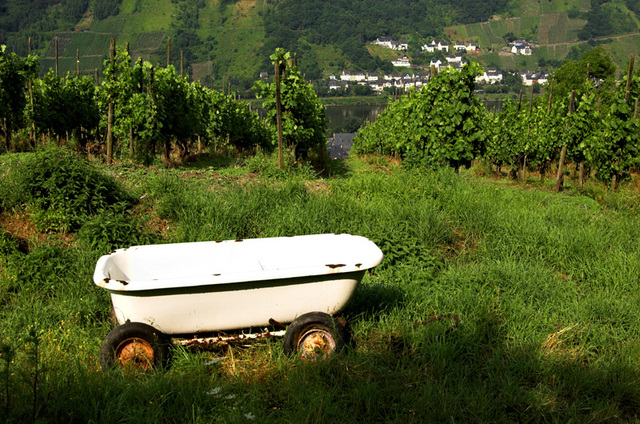 Mobile bathtub