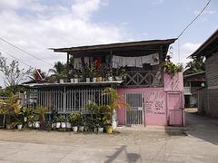 Maison  à saveur Jehova / Jehova vocation house.