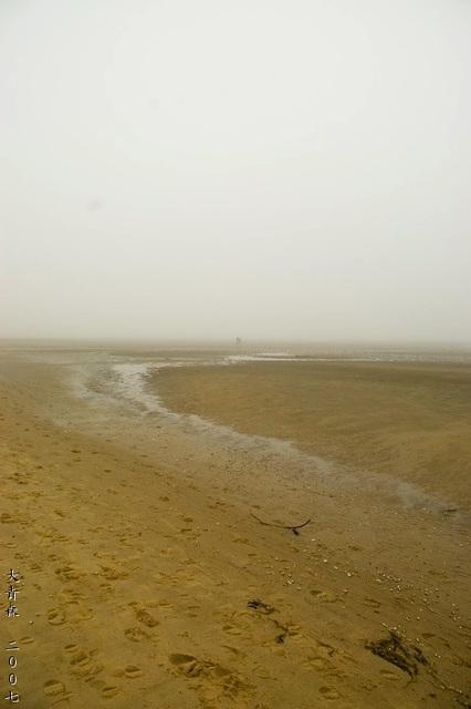 Odde im Nebel 2