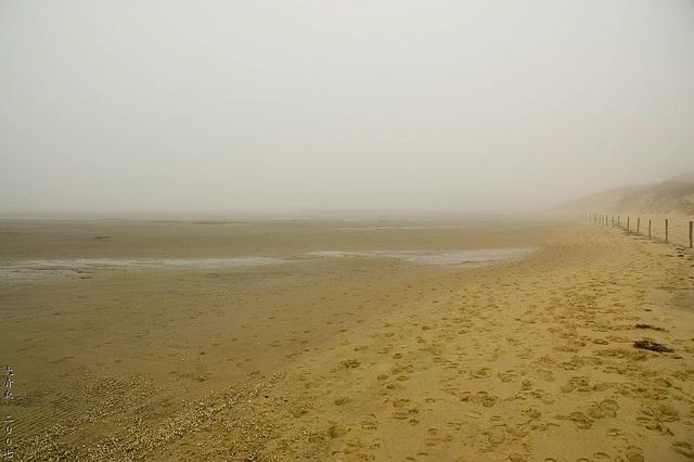 Odde im Nebel 1