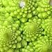 Vegetable fractal