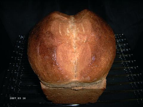 Whole Wheat Bread made with Hard Wheat 1