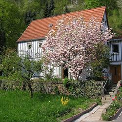 Mein Haus in Oberposta - Pirna
