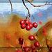 Vogelbeeren...bird berries