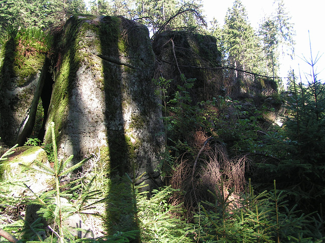 Schwarzwald: Dobel