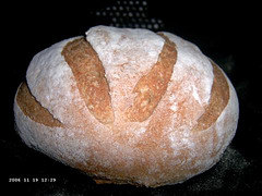 Hearth Bread the Traditional Way 1