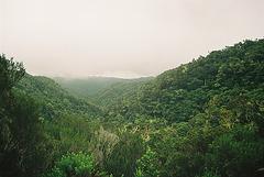 Vallée de la rivière St Denis