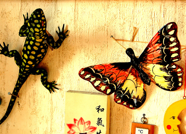 Papilio kaj salamandro