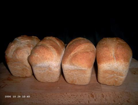 Viola's licht volkorenbrood