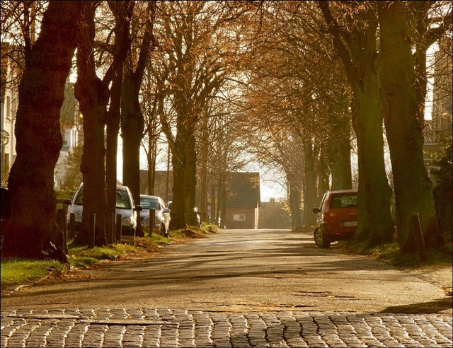 Our little street..