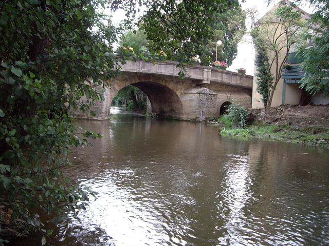 le pont du lion d'argent