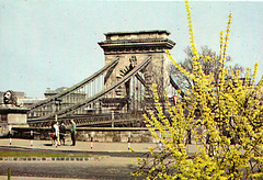 Budapest Chain Bridge (19th c.)
