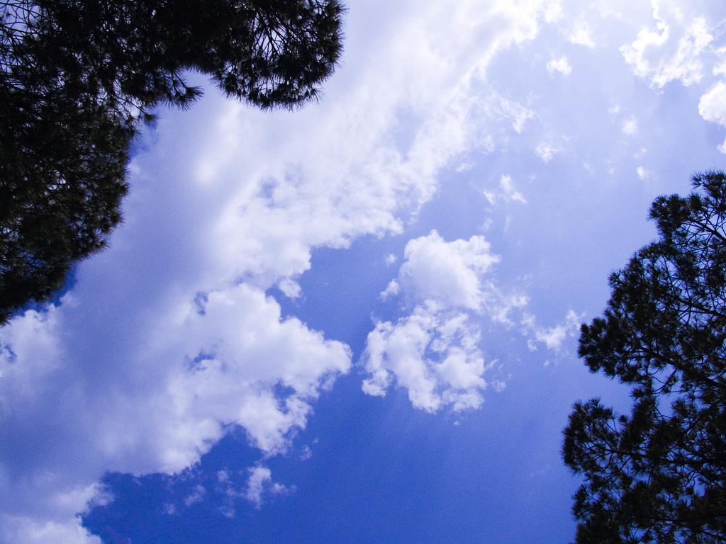 I don't like blue skies