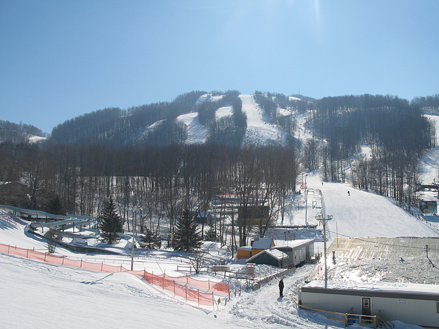 Skiboarding