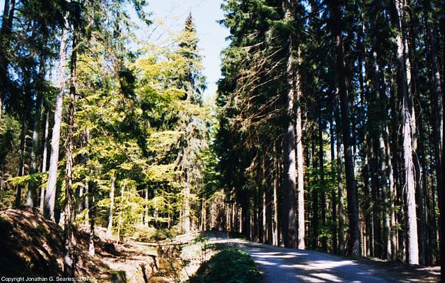 Sumava Hike, Picture 2, Sumavsky Narodni Pamatka