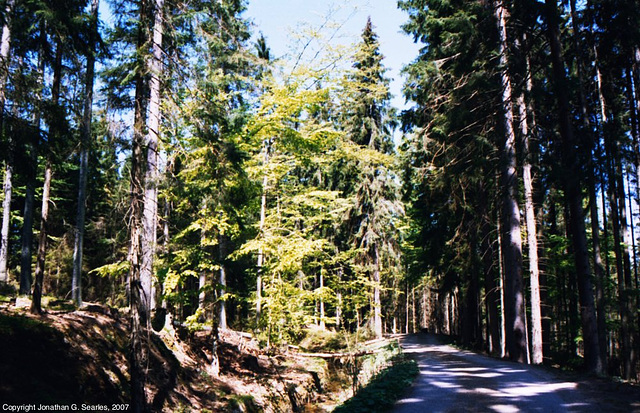 Sumava Hike, Picture 5, Bohemia(CZ), 2007