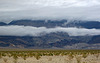 Panamint Valley (4225)