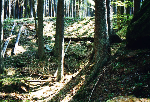 Sumava Hike, Picture 11, Budejovicky Kraj, Bohemia(CZ), 2007