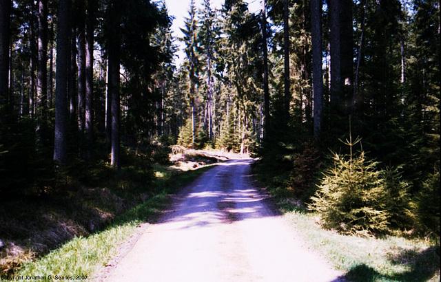 Sumava Hike, Picture 15, Sumavsky Narodni Pamatka, Budejovicky Kraj, Bohemia(CZ), 2007
