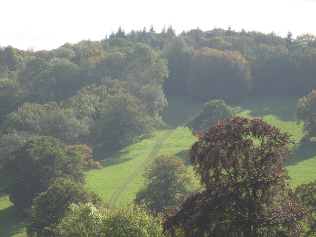 Polesden Lacey nice view