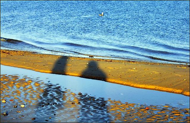 Shadows on the beach..