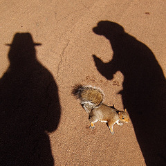 The Squirrel and the Hat-Shadows