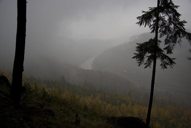 Elbtal im Nebel