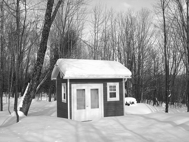 Petit chalet solitaire parmi la neige immaculée /   Small chalet among the immaculate snow - Quebec / CANADA - B & W