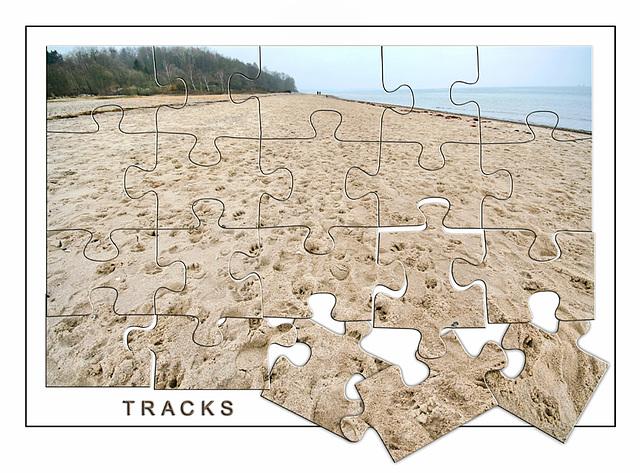 Spuren im Sand~~~