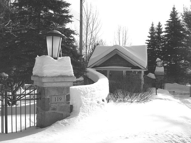 St-Benoit-du-lac / Québec- CANADA - 7 février 2009-  B & W