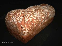 Haver-stroopbrood
