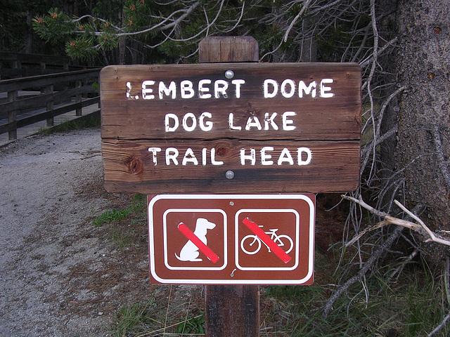 für Hunde verboten?