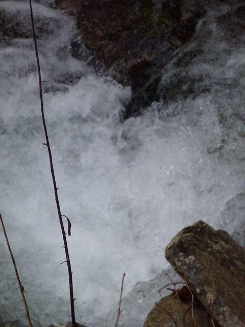 20130324 Fee Cabirllac (Mt Aigoual) (60) ledge