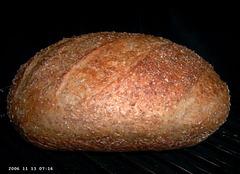 No-Knead (Meergranen) Bread 2