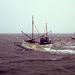 Fischerboot mit Möwen.......