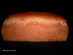 Amsterdams brood
