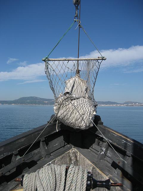 RIQUITUM, sail's nest (2)