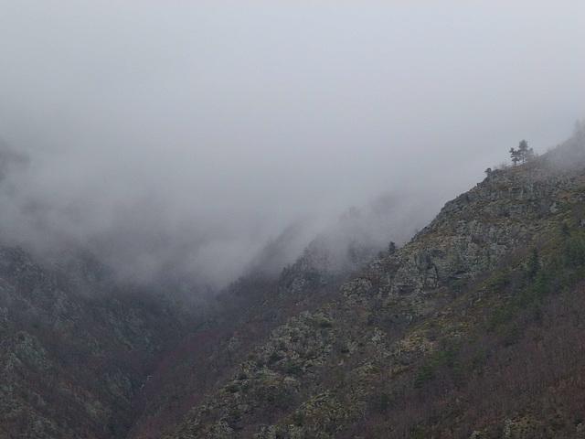 20130324 Fee Cabirllac (Mt Aigoual) (76) ledge