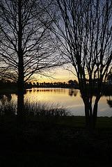 Sunrise in Florida P1040359