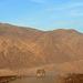 Death Valley (9768)