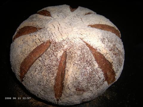Whole Wheat Bread with Multigrain Soaker